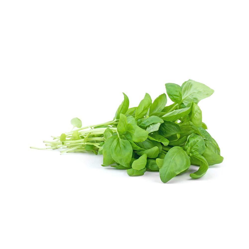 basil ingredient