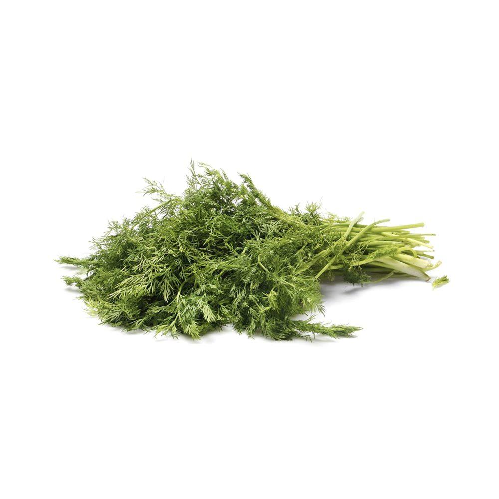 fresh dill ingredient
